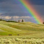 潜在意識?直感?|導かれるように虹を見た